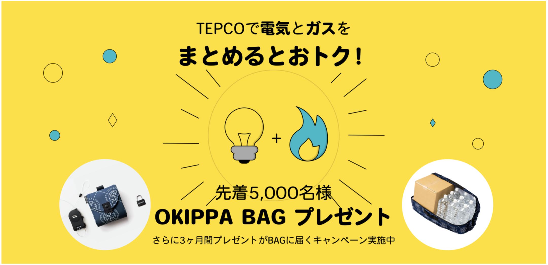 コード tepco キャンペーン