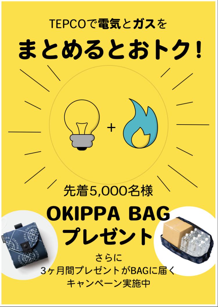 キャンペーンコード 東京電力 東京ガス